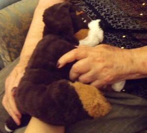 My favourite lap dog puppet